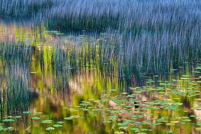 Otter Lake, Acadia