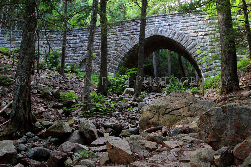 Hemlock Bridge was built in 1924 it spans the Maple Spring Brook with a 185 foot expanse and 30 foot Gothic arch.  This bridge is one of many along the Acadia National Park hisitoric carriage road system.