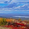 Fall on Cadillac Mountain.