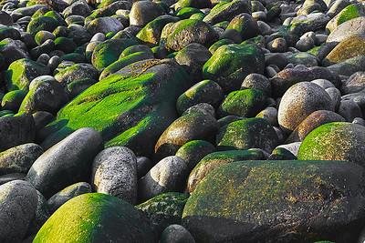For the Irish.  Otter Cliffs.  October 2011.