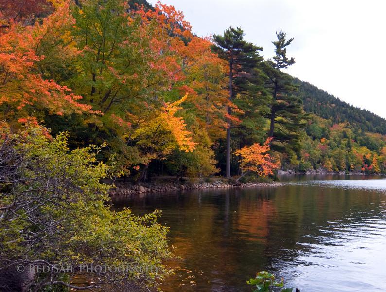 Jordan Pond Afternoon