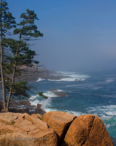 Misty Afternoon at Thunder Hole