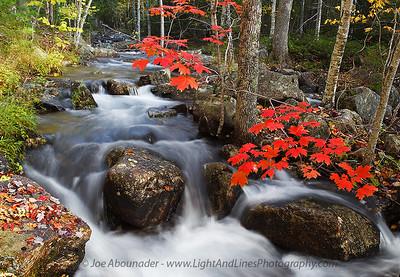 Jordan Pond Stream.  October 2011.