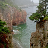 """""""Raven's Nest"""" An out of the way area on Schoodic Peninsula section of Acadia National Park."""