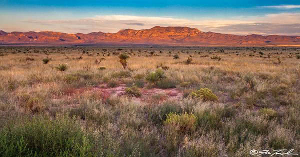 Tobosa Grassland Sunset