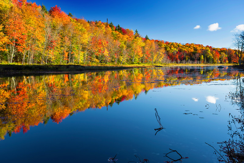 Adirondack, Fall Colors, Lack Placid, New York, Speculator, 普莱西德湖, 纽约州, 阿迪那达克,秋色