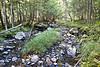 Jimmy Creek