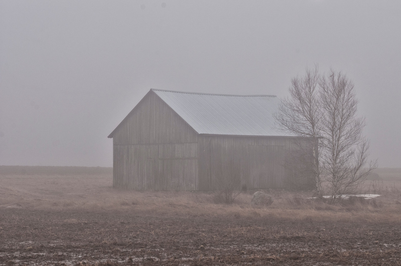March 16 - Today headed up to the Adirondack Mts driving in heavy fog the whole way.  This barn is a favorite of my to photograph.  It's in Vermontville, NY.  The background has Whiteface Mountain in it (normally), but it's fogged in today.