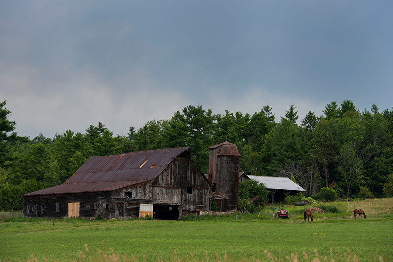 July 25 - Old barn in Essex County, NY between Lake Champlain and the Adirondacks.