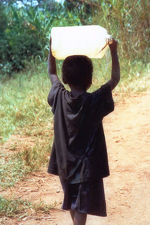 Many African children work 16-20 hours a day, 7 days a week, for survival.  Given an opportunity to succeed in life, often allows them to excel. They know how to work!