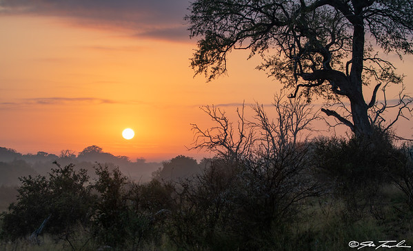 Magical moments in The Kruger