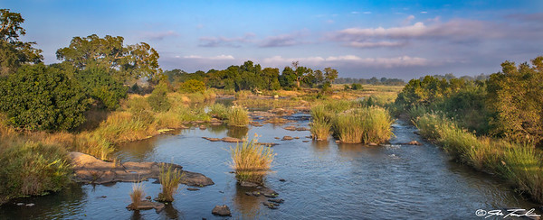 Dawn at the Sabie River
