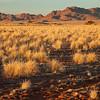 Namibia09-0809