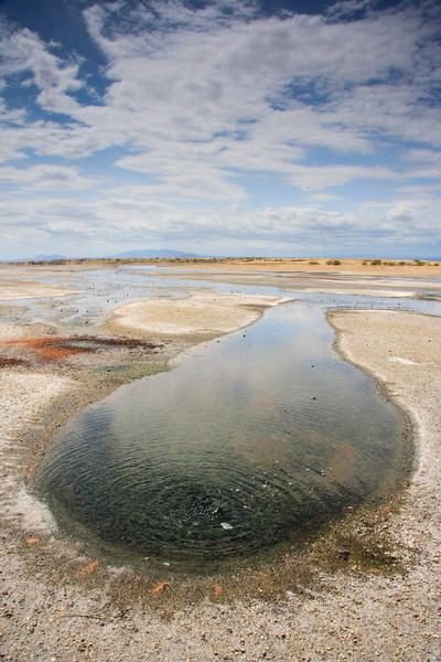 Lake Magadi Hot Spring