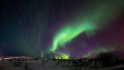 Aurora, Batsfjord Norway