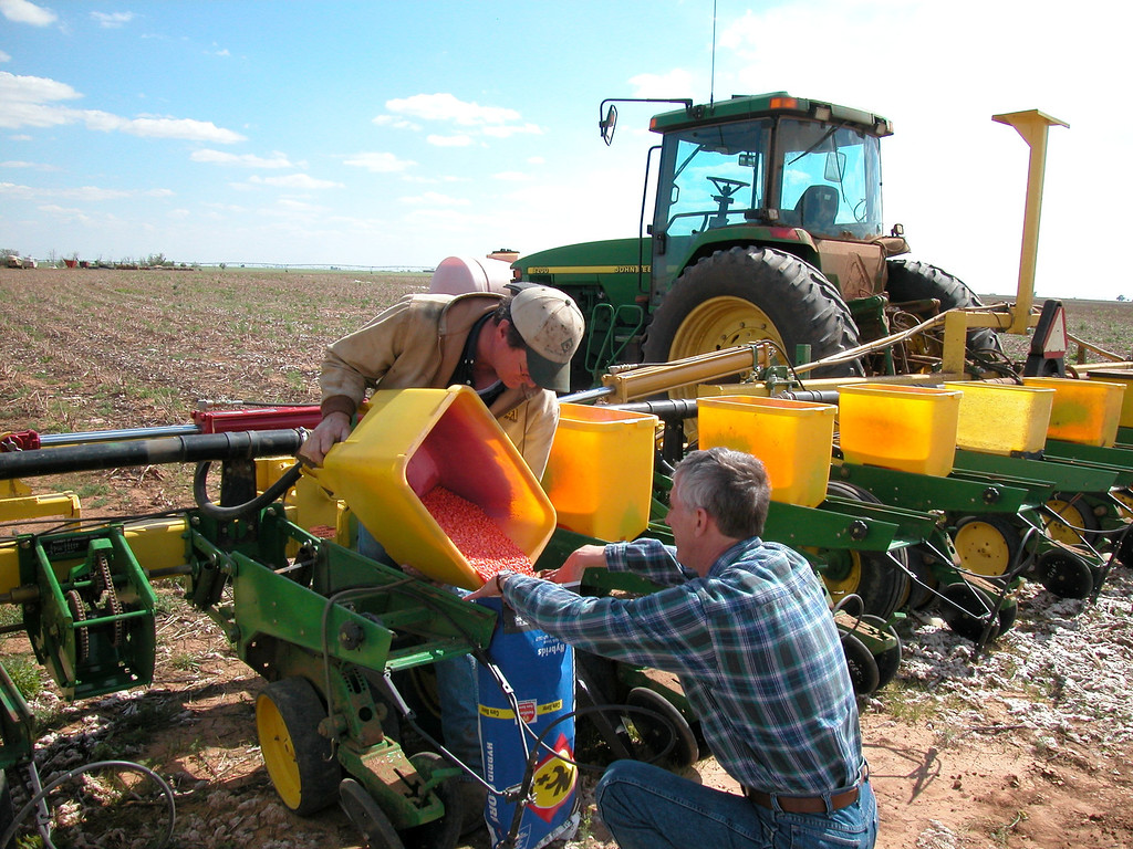 Putting left over seed corn back in the bag after planting corn.