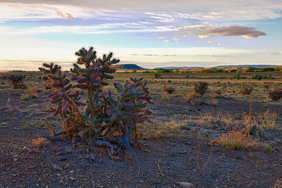 This is a composite of three images shot at sunrise near Cimarron, New Mexico. The technique is called High Dynamic Range (HDR) and uses images that are underexposed, overexposed and properly exposed. The coloration looks a bit like an old post card. This was the first HDR I ever attempted.