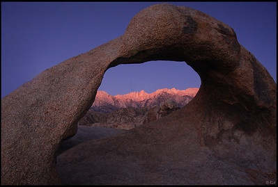 Aspen glow on Mt. Whitney, seen through Mobius Arch, sunrise  Alabama Hills, CA