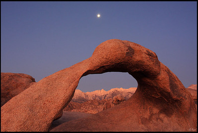 Aspen glow on Mt. Whitney, seen through Mobius Arch, full moon setting at sunrise  Alabama Hills, CA