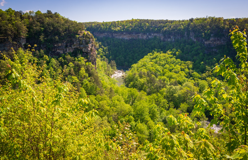 Valley Overlook at Little River Canyon National Preserve