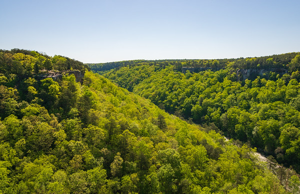 View of the Valley, Little River Canyon National Preserve