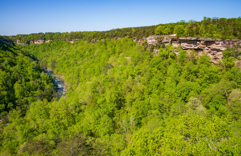 Cliffs and River at Little River Canyon National Preserve