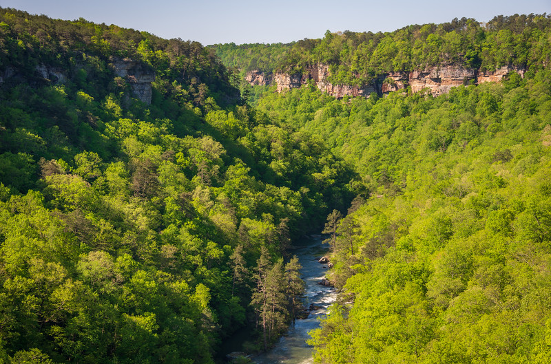 River through the Cliffs at Little River Canyon National Preserve