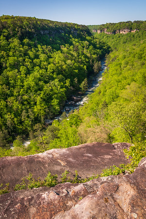 Long View of River at Little River Canyon National Preserve