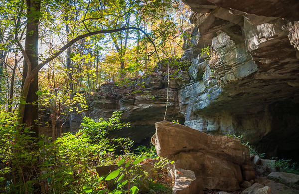 Harsh Cliffs at Russell Cave National Monument