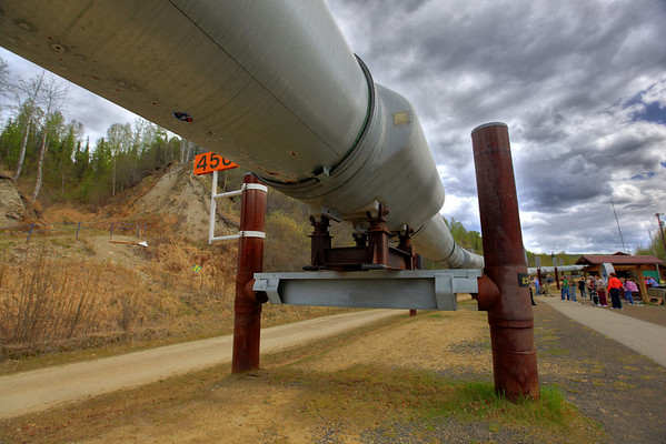 The 800-mile-long Trans Alaska Pipeline where it emerges from underground outside of Fairbanks.