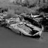 Alaska Vacation2008 0845