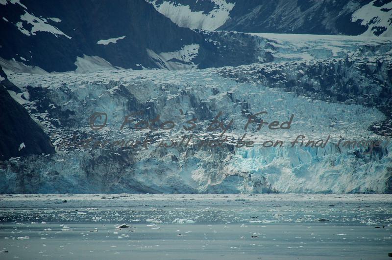 Alaska Vacation2008 0379