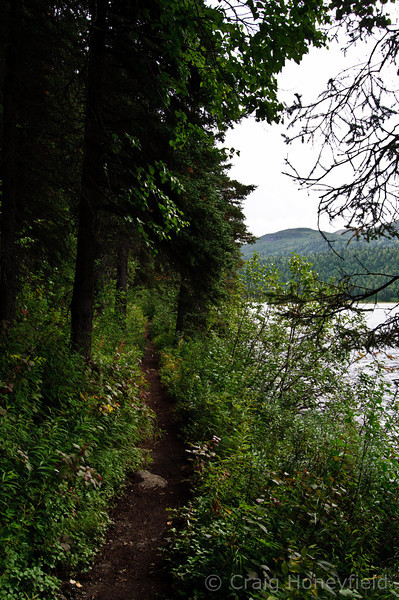 Single track trail that loops around Brier Lake.  Flat, perfect hiking trail.