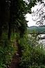 Single track trail that loops around Brier Lake.  Flat, perfect hiking trail.