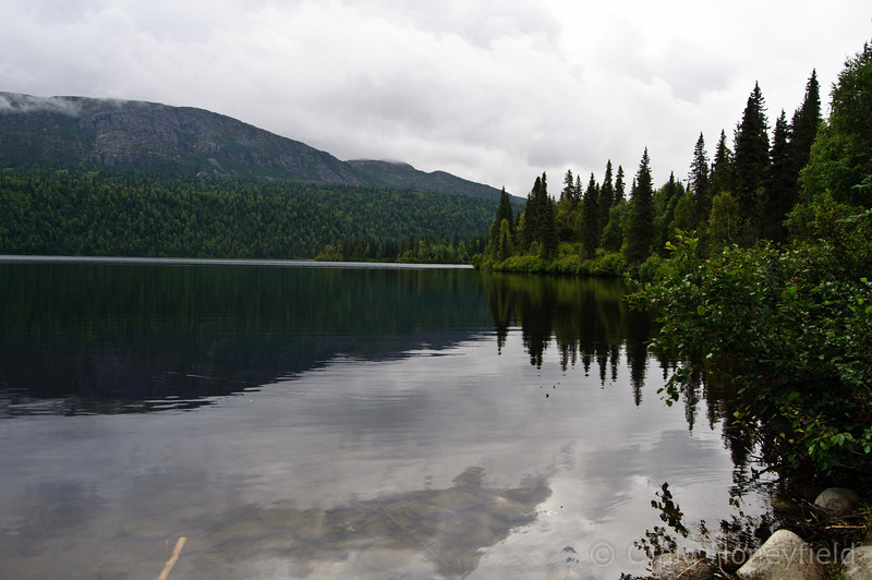 Brier Lake.  Craig hiked 1/2 way around this lake alone.  It is known to have a large population of back and brown bears.  However, he did not see any bears :-(