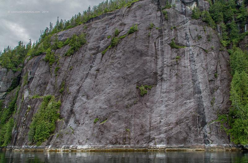 Glacier carved wall at Misty Fjords