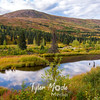 126  G Hatcher Pass Area Pond