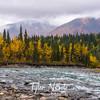 146  G East Fork Chulitna River