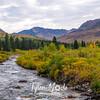 131  G Hatcher Pass Area River