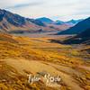 551  G Denali Views