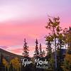 507  G Denali Sunrise