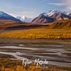 533  G Denali Views