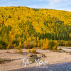 660  G Chena River Area Fall Colors