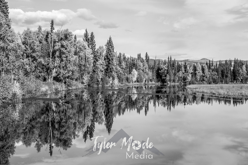 650  G Chena River Area Fall Colors Reflections BW