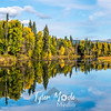 649  G Chena River Area Fall Colors Reflections