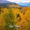 692  G Fall Colors