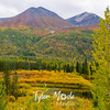 738  G Fall in South Central Alaska