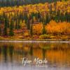 711  G Meiers Lake Fall Colors