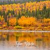 710  G Meiers Lake Fall Colors