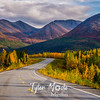 869  G Fall in South Central Alaska Road South